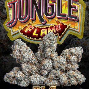 Jungle boys weed