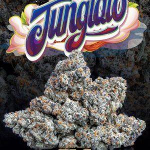 Buy Junglato Strain weed Online