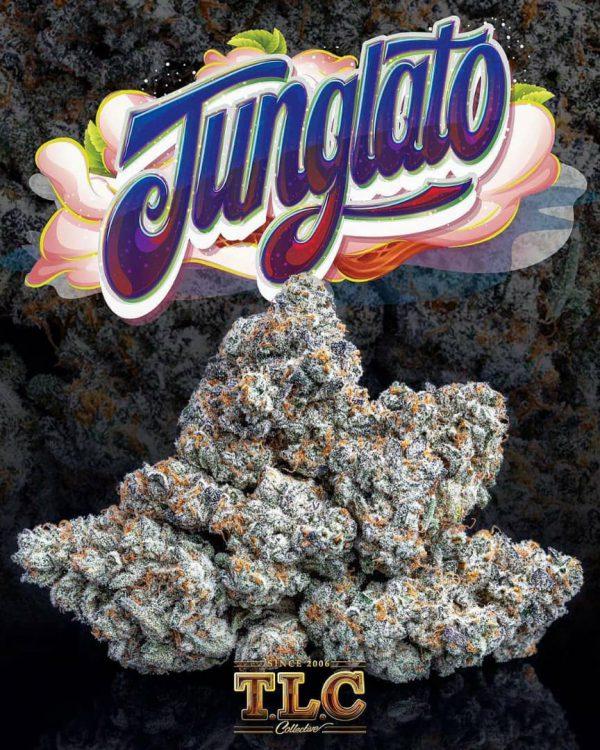 Junglato Jungle boys