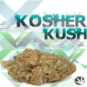 Kosher Cookies Strain